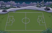 Soccer Pitch Location night