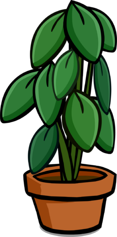 File:Large House Plant.PNG