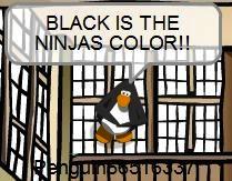File:Hacker-Ninja.jpg