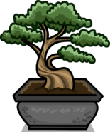 Bonsai Tree sprite 004