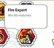 Fire expert stamp book