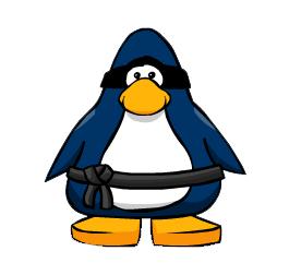 File:Swiss Ninja.png