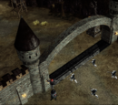 Raid on Lost Castle