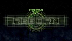 TS Reborn 2013
