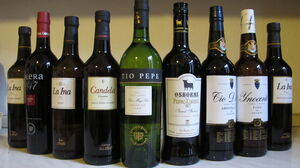 Colleccion vino jerez