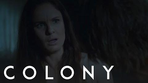 Colony 'Collaborate And Die'