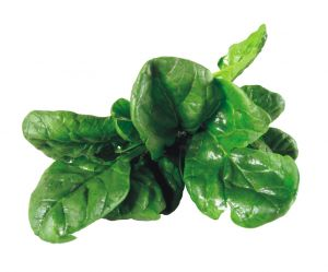 552987 spinach