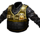 BGL's Light Vest