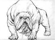 Kevn-Nowlan-Hulk hulk-dog4