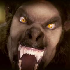 Im a die by werewolf!