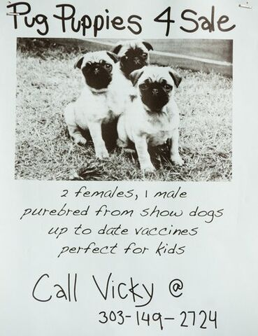 File:Greendale poster17.jpg