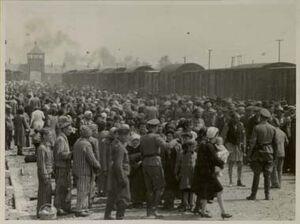 Selection-Auschwitz-1944