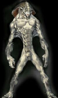 Concept vyrium sysperis sm
