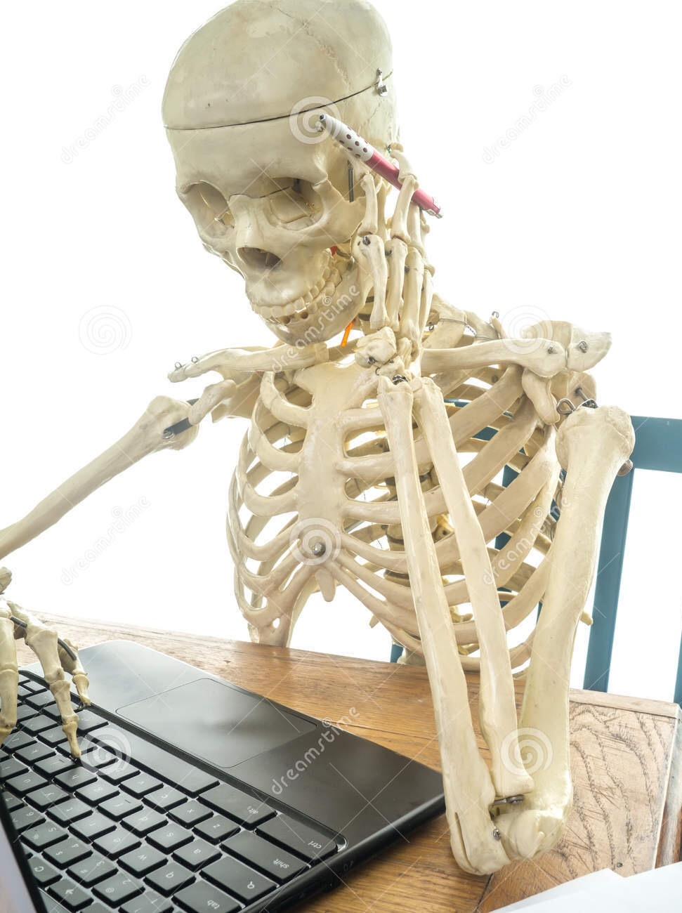 latest?cb=20160225204307 image skeleton at a computer book of shadows meme jpeg corpse,Skeleton Computer Meme