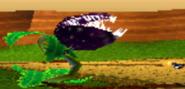 VenusFlyTrapCTR