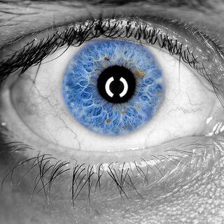 An altered human iris. Every human being is born with pale blue or pale green eyes–though color can be changed.