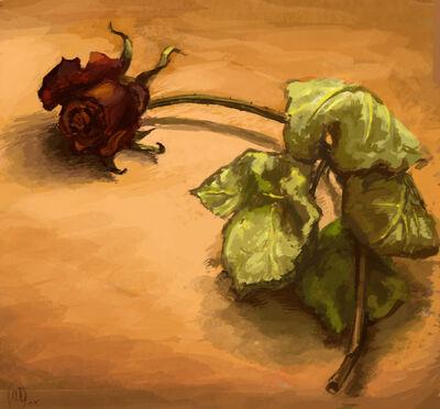 Etude Wilted Rose by BabushkaYaga