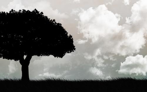File:Mannequin Tree.jpg