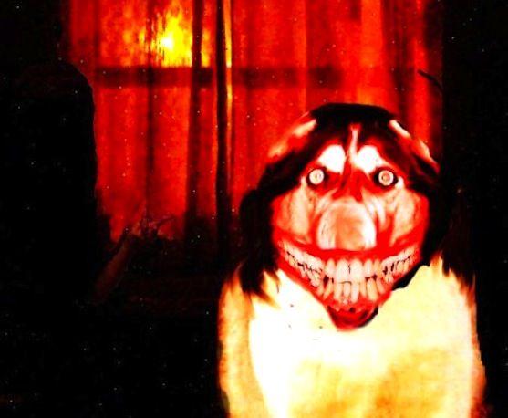 Smile.dog.jpg