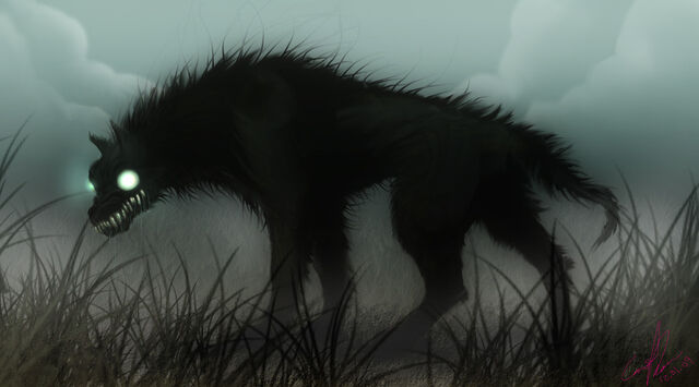 File:Black dog.jpg