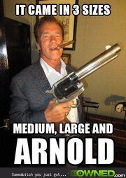 Arnolds back 540