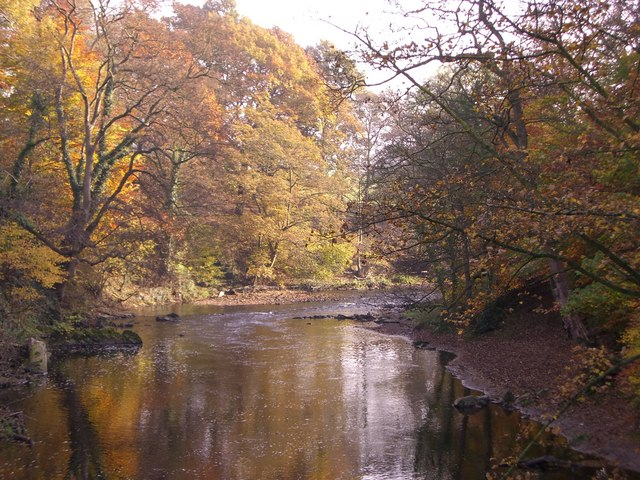 File:River Goyt in Woodbank Park - geograph.org.uk - 730720.jpg