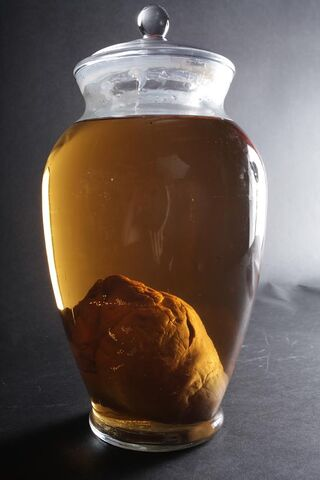 File:Large apothecary heart jar 100 73983 zoom.jpg