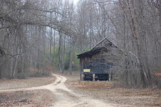 File:House in woods.jpg
