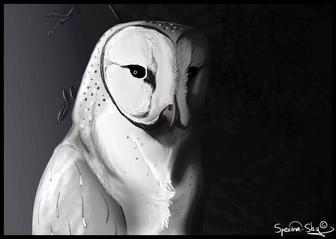 Owl Reaper