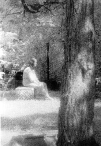 File:Bachelor-grove-cemetery.jpg