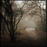 Creepy-clasic-road---bride-alone
