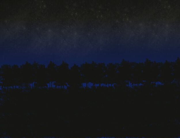 File:Nighttime forest by Shading Dreams.jpg