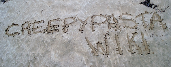 File:Wiki on the beach.png