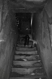 File:Creepy stairs.jpg