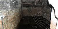 The Church Cellar