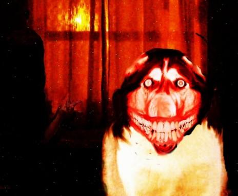 File:Smiledog2.jpg