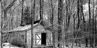 Lodge 617