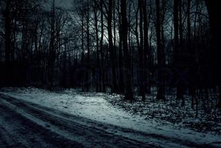File:Snowy Road.jpg