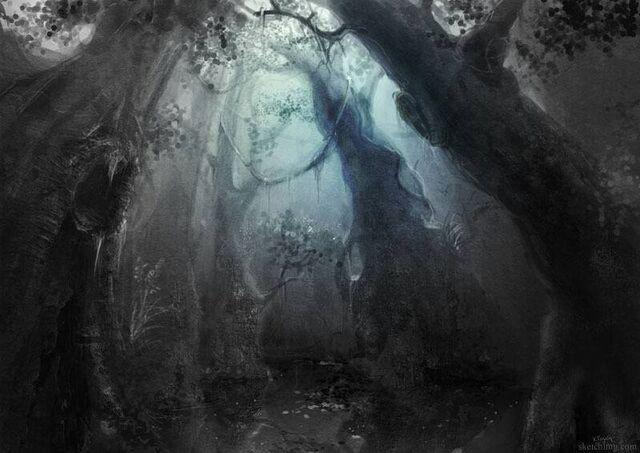 File:Forest1-1.jpg
