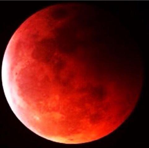 File:Blood moon.jpeg