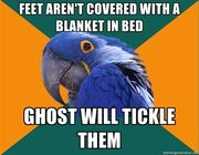 Ghost parrot