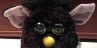 Jennifer's Furby