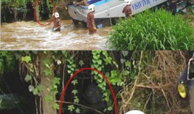 File:Demonic-creature-haunts-bridge-near-accident-scene.jpg