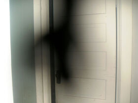 ShadowPerson1