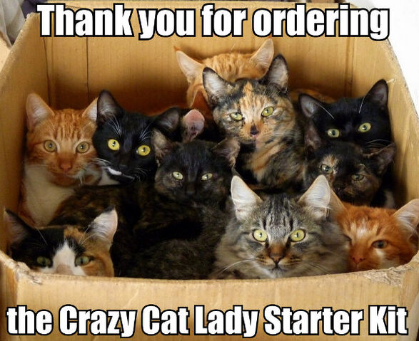 File:Thank-you-for-ordering-the-crazy-cat-lady-starter-kit.jpg