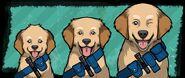 3 (Labrador Retriever)