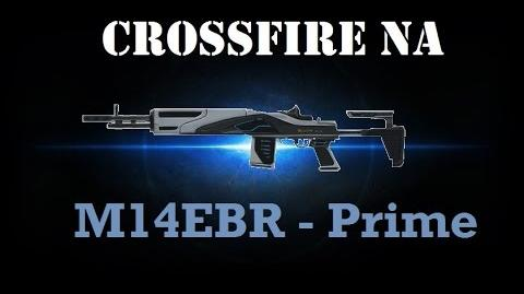 Crossfire NA - M14EBR Prime Review-0