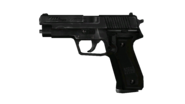 P228 1