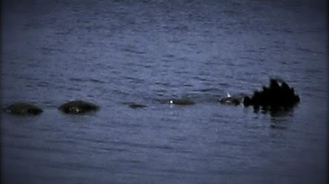 Bear Lake Monster (CreepyPasta) Retold by S.E.Schlosser