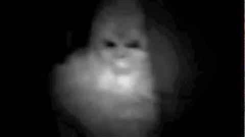 Bigfoot Caught on Tape (HD)